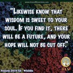 Proverbs 24:14 TLV #tlvbible #quote #bible