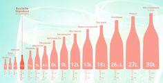 Bouteille de champagne - infographie