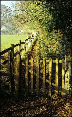 Country Fence - love it! Country Fences, Country Farm, Country Life, Country Living, Country Roads, Vie Simple, Old Fences, Fence Gate, Fencing