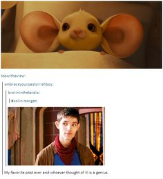 OH MY GOSH I CAN NOT THE LEVEL OF ADORABLE HAS REACHED OUTER SPACE. // D'aaaw XD The little mousey-merlin.