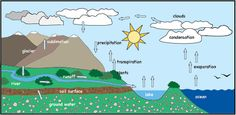 Image result for Water Cycle clipart Water Cycle, Surface, Clip Art, Ocean, Clouds, Activities, Image, Sea, The Ocean