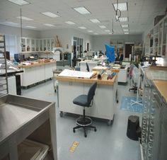 Superb University Of South Carolina Libraries Conservation Lab