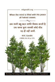 #MahatmaGandhi #quotestoday #gandhiquotes #InspirationalQuotes #quoteoftheday #quotes #MotivationalQuotes #lifequotes #PositiveVibes #Gandhi #hatred #FridayMotivation #FridayThoughts