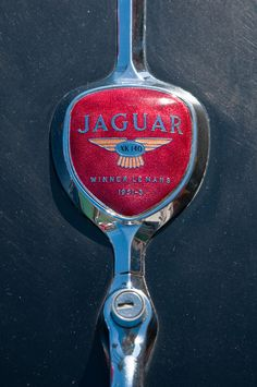 Back when car makers took extra time and consideration to make gorgeous insignias. Jaguar XK 140