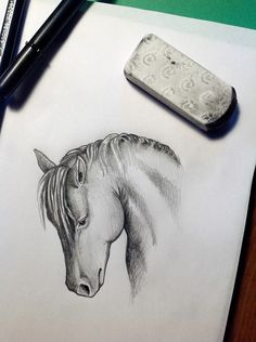 study to horse head 3