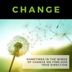 In #business often it's better to not ask why things happen the way they do. Apply sound #leadership and #manage through the #change. #Success is waiting!