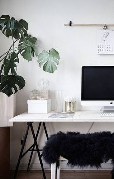 Home Office and Plants Chandelier // Tropical Plant greenery // decoração// pantone // vipapier // papelaria