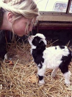 Cutest goat ever ;-)