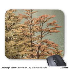 Landscape Scene Colored Trees at Glacier Lake Zazzle Mouse Pad