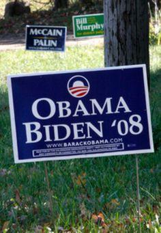 20 Political Yard Signs Ideas