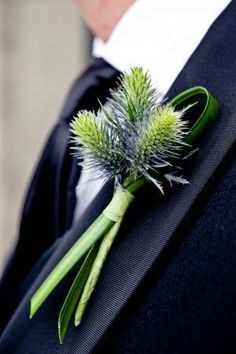 Thistle is a common flower in Scottish themed weddings.  It has a great and deep meaning in Scottish History, Not only is in the the Emblem for their country but is thought to be cause of a great v…