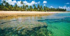 Praia de Taipú de Fora, em Maraú, península de Maraú, litoral sul do estado da Bahia, Brasil. Área de Proteção Ambiental, aqui a natureza está praticamente intocada pelo homem. Forma um triângulo ecológico entre Camamu, Barra Grande e Maraú. Quilômetros de praias de areia branca, águas mornas e cristalinas que na maré baixa permite a prática de mergulho entre recifes de corais.