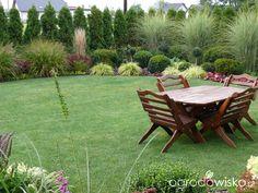 Ogród mały, ale pojemny;) - strona 144 - Forum ogrodnicze - Ogrodowisko