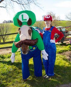 Mario and Luigi- horse Halloween costume! Cow Costumes, Horse Halloween Costumes, Halloween Ideas, Horse Fancy Dress Costume, Heartland Seasons, Miniature Horses, Mario And Luigi, Photo Competition, Fluffy Animals
