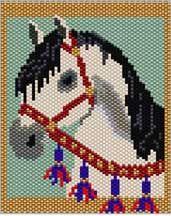 Arabian Horse Pattern