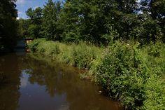 Canal, summer