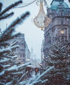 494 Best Christmas Love images in 2019 | Christmas