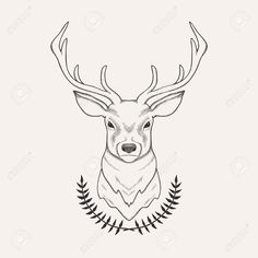 Image result for deer drawing