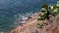 Rocky Coast Above The Sea, Porto Azzurro, Elba Island - Stock Footage | by eZeePicsStudio