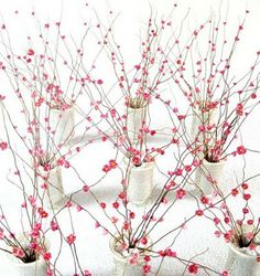 DIY: cherry blossom paper flowers