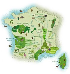 Mel Croft - Map of French wine regions