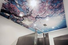 Laqfoil Stretch Ceiling Printed Image