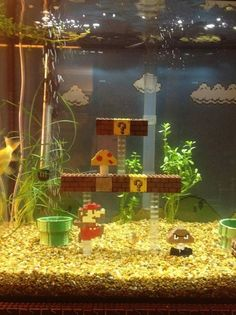 Super Mario Bros. Fish Tank.  I don't like fish as pets, but if i did, this would be THE tank.