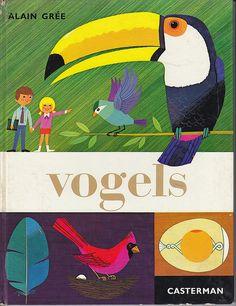 Birds Alain Gree
