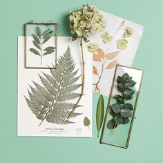 Join the green revolution Encouraging Images, Green Revolution, Pastel Grey, Pressed Leaves, Green Gifts, Breath Of Fresh Air, Writing A Book, House Plants, Decor Styles