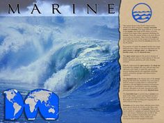 POSTER: Pictures and text describe the largest and most diverse biome, which includes the oceans, intertidal zones and estuaries. Includes a map. Poster Pictures, Biomes, Water Systems, Salt And Water, Oceans, Science, Fresh, Explore, Sailor