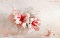 LUIZA GELTS Arte Floral, Still Life Photography, Love Flowers, Art Google, Photos, Blog, Image, Beautiful, Bible Verses
