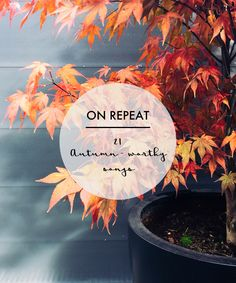A Life Less Ordinary - Autumn Playlist. #lifestyle #music #playlist #autumn #fall #blogposts