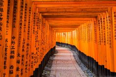 Places to see in Japan - The Torii Gates at the Fushimi Inari Shrine