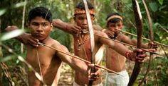 indio brasileiro criança - Pesquisa Google