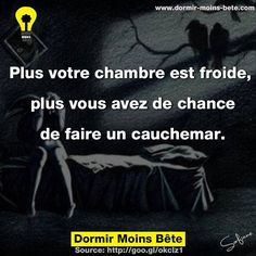Plus votre chambre est froide, plus vous avez de chance de faire un cauchemar. Good To Know, Did You Know, Me Quotes, Funny Quotes, French Quotes, Funny Facts, Things To Know, Proverbs, Knowing You