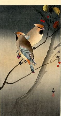 "小原古邨 ""Waxwings on Berry Tree"", by Ohara Koson (Japanese, Japanese Painting, Chinese Painting, Chinese Art, Bird Illustration, Illustrations, Ohara Koson, Japanese Woodcut, Art Chinois, Art Asiatique"