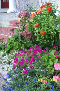 43 Best Garden Images Garden Outdoor Gardens Dream Garden