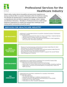 1WorlddSync Professional Services for the Healthcare Industry by 1WorldSync via slideshare