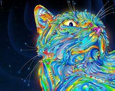 Midnight Cat