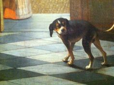 #rijksmuseum #dog