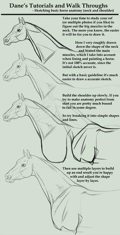 How to draw a horse. Tutorial/Walk Through - sketching a horse neck etc by AgerskovArt.deviantart.com on @deviantART