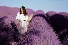 Provence, Dandelion, Destination Wedding, Photo Galleries, Photoshoot, Gallery, Creative, Flowers, Plants