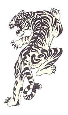 crouching tiger tattoo designs | Uploaded By Rachel Watford Nice Tribal Tiger Tattoos Crouching On Me