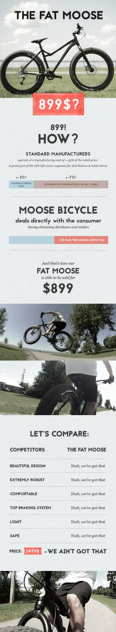 The Fat Moose is a fatter, cheaper bicycle that can handle a wide variety of terrain. Wish I could get one here in the UAE; huge tires like this are exactly what you need in the desert!