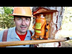 Skills Every Guy Should Master - Tree Felling - YouTube