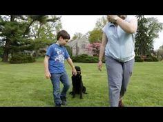Kids and Dog Training