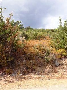 ode No: 10114 Residential land for sale in Moniatis - Saittas area in Limassol.