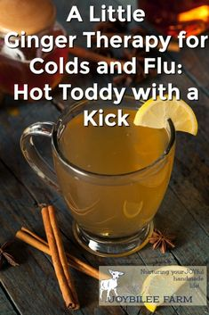 Try this ginger hot toddy for quick relief when you have a cold or the flu. Ginger is warming, antiviral, and antibacteria. This hot toddy will help you sleep so you can get better faster. Natural Remedies For Anxiety, Natural Cough Remedies, Flu Remedies, Herbal Remedies, Bloating Remedies, Natural Cures, Laryngitis Remedies, Natural Foods, Holistic Remedies