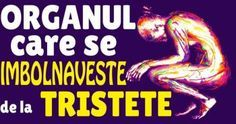 SANĂTATE – Înainte de toate! Spirituality, Medical, Health, Health Care, Medicine, Spiritual, Healthy, Active Ingredient, Salud