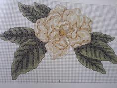Magnolia pattern I am using for a cushion